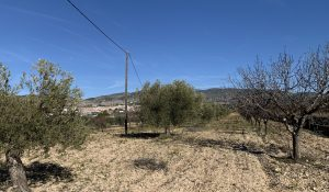 terreno-en-venta-Ibi-Alicante